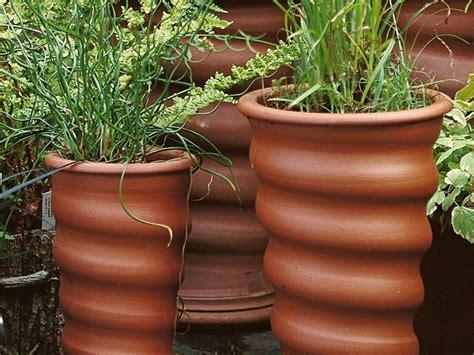 vasi terracotta da giardino vasi e fioriere vasi da giardino contenitori piante