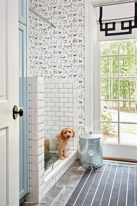 Bath And Shower Stall mudroom dog shower design ideas