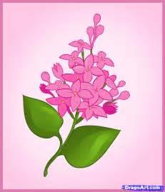 cara melukis bunga kamboja www imgkid the image kid has it