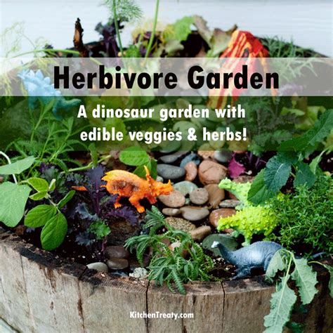 how to build an herb garden 100 how to build an herb garden 4 step guide to