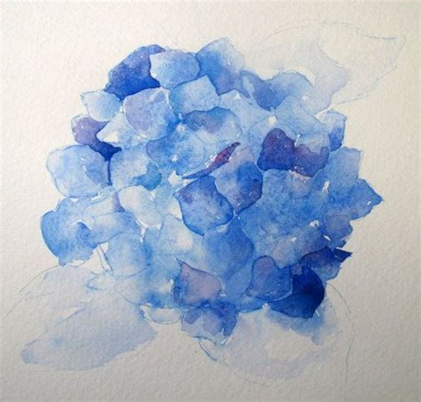 watercolor hydrangea tutorial step by step watercolor how to paint a blue hydrangea