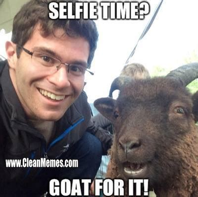 Goat Memes - funny goat memes