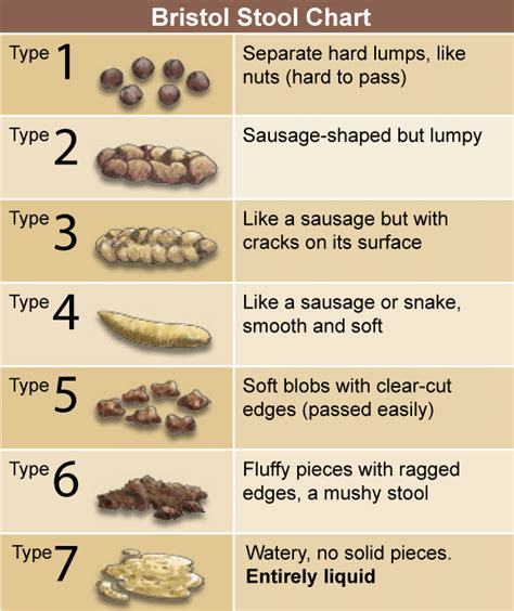 Bristol Stool Chart For by The Facts Of Constipation Positive Parenting