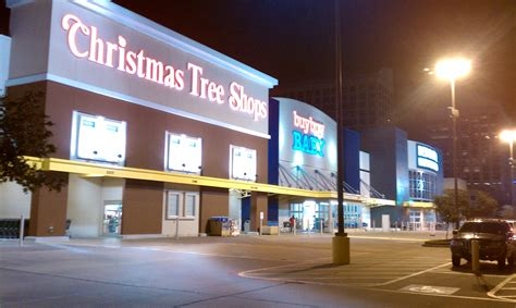 100 christmas tree store amherst ny christmas tree