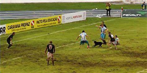 Bola Karet Mainan Anjing Feeding seekor anjing gagalkan striker ini cetak gol bola net