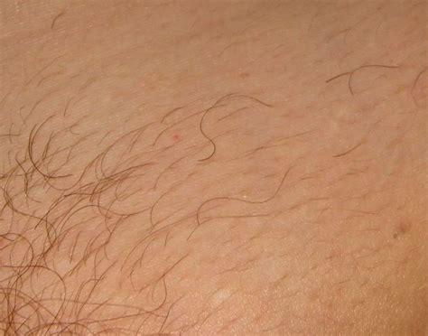 what is the latest pubic hair style bikini bridge pubic hair 1 newhairstylesformen2014 com