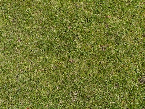 texture grass floor golf course background pattern stock