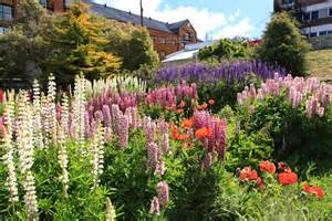 flowers garden photos file flower garden in ushuaia 5543010755 jpg wikimedia