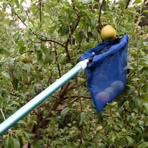 Fruit Picker by Clip N Fruit Picker Only