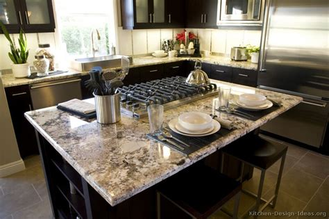 Images Of Kitchens With Black Cabinets Pictures Of Kitchens Traditional Black Kitchen Cabinets
