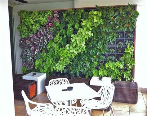Vertical Garden Brisbane Vertical Garden Design Ideas Get Inspired By Photos Of