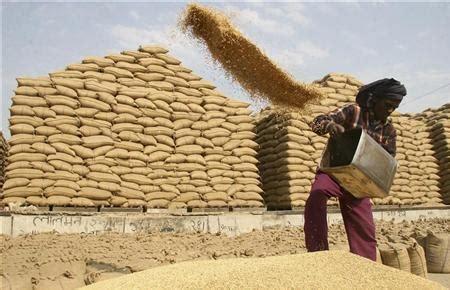 smallholder farmers management | farm management application