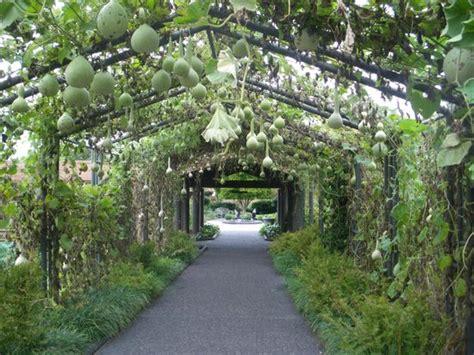Mizzou Botanic Garden Covered Walkway Picture Of Missouri Botanical Garden Louis Tripadvisor
