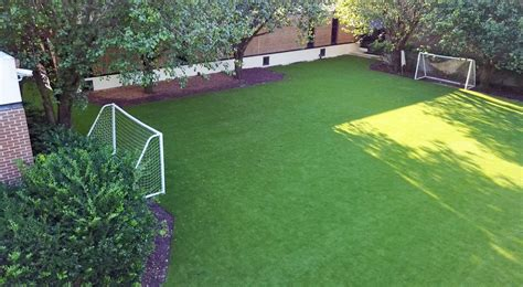 artificial grass  charleston     lowcountry