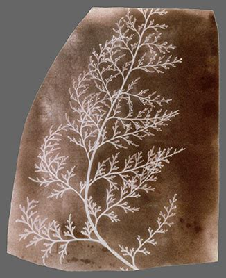 william henry fox talbot (1800–1877) and the invention of