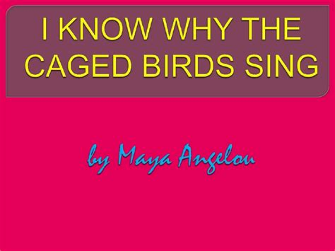 I Why The Caged Bird Sings Essay by College Essays College Application Essays I Why The Caged Bird Sings Essay