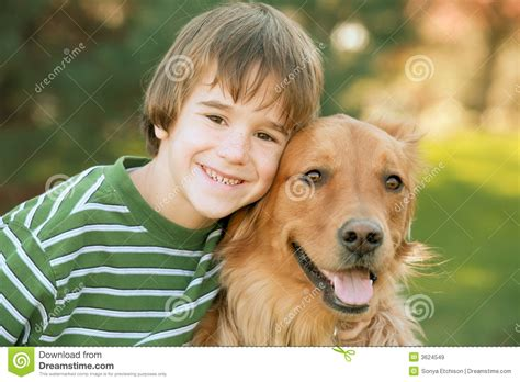 boy golden retriever boy with golden retriever royalty free stock images image 3624549