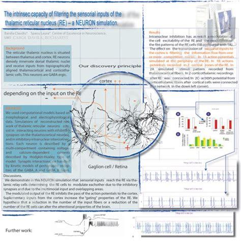 poster layout blog neuroscience blog neuroscience poster design