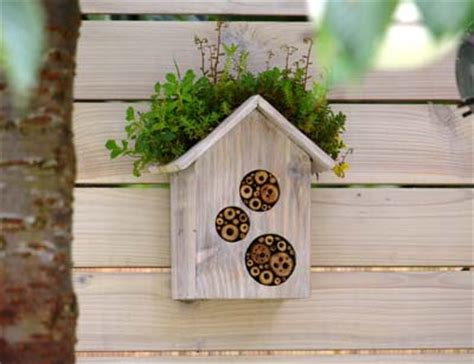 meadowmat wildflower blog how to make a home for