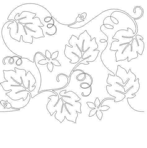 coloring pages of pumpkin vines 621 best images about printables leaves on pinterest