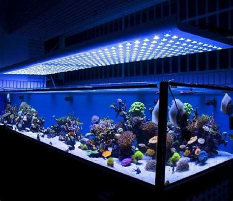 18 Amazing Led Strip Lighting Ideas For Your Next Project Led Lights For Aquarium