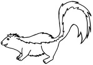 cute skunk coloring images amp pictures becuo