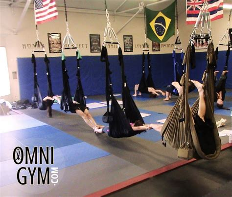 omni gym yoga swing 1000 images about training on pinterest workout rooms