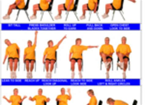 chair exercises for elderly adults chair exercises pdf floors doors interior design