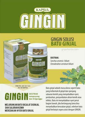 Obat Herbal Gingin gingin kapsul batu ginjal membantu meluruhkan batu oksalat