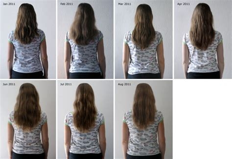 before snd after picture of hair growth in eonen best msm hair growth photos 2017 blue maize