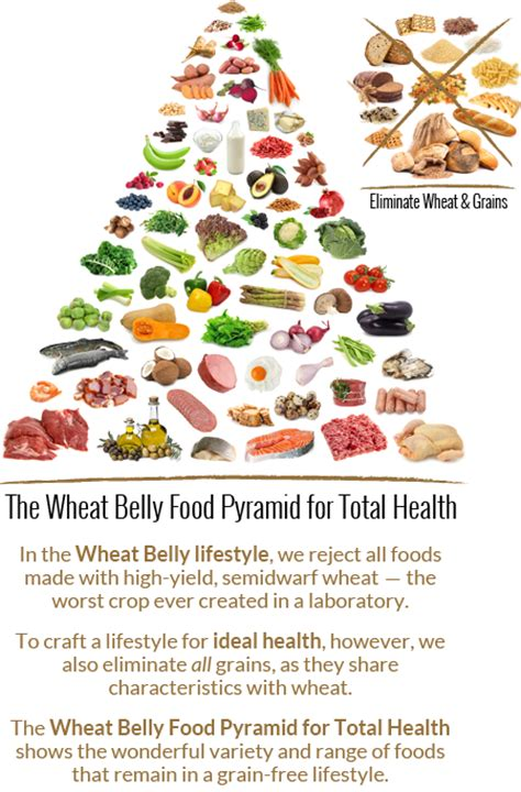 Wheat Belly 10 Day Detox Results by Dr William Davis