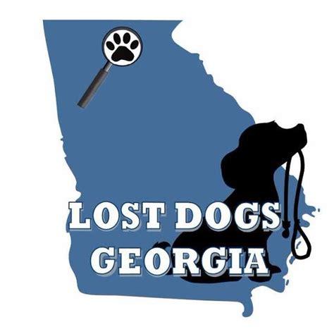 puppies ga lost dogs lostdogsgeorgia