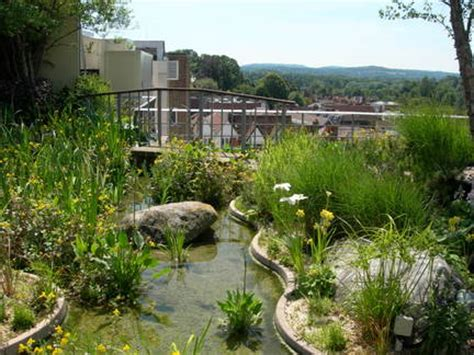 Roof gardens and balconies/RHS Gardening