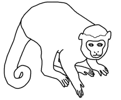 Outline Of A Monkey by Simple Monkey Outline Clipart Best