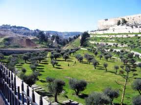 Olive Garden Montana by Mount Of Olives Looking For The Blessed
