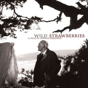 filme stream seiten wild strawberries wild strawberries 1957 rotten tomatoes