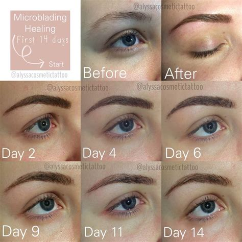 25 great ideas about eyebrow blading on pinterest