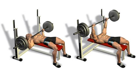 bench press by yourself how to build the perfect pectorals all bodybuilding com