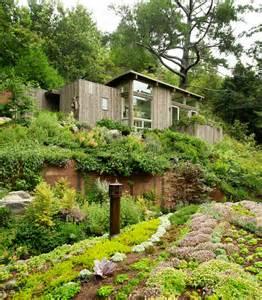 Hgtv Backyard Makeovers Artist Studio Overlooks Guest Cabin With Rooftop Garden