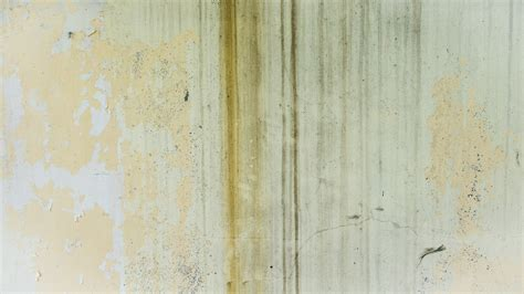 wall paint that doesn t get dirty free images grungy texture floor wall pattern paint