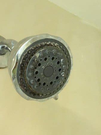 Paket Shower Elitshower Mandishower Dr 8 harrisburg hershey west pa review motel perbandingan harga tripadvisor