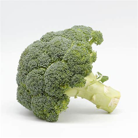 alimentos ricos en yodo para hipotiroidismo alimentos restringidos en hipotiroidismo alimentos