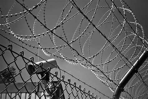 free stock photo of abstract barbed wire black white