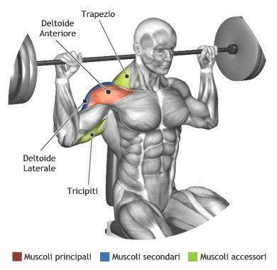 posterior shoulder pain bench press 216 best shoulder workouts images on pinterest shoulder