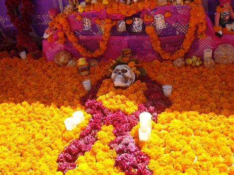 What Does Orange Symbolize Boots N Burbs Botanical Marigold