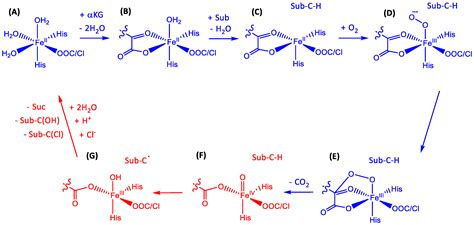 catalysts  full text  comparative review