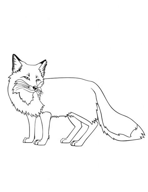 printable fox coloring pages  kids animal