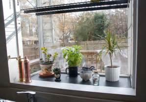 Best Kitchen Window Plants Baby Steps Updating The Kitchen Glitter Goat Cheese