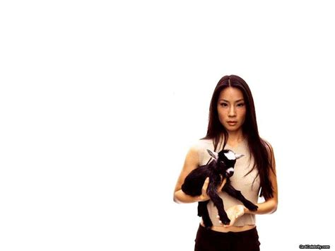 lucy photo lucy liu images lucy liu hd wallpaper and background