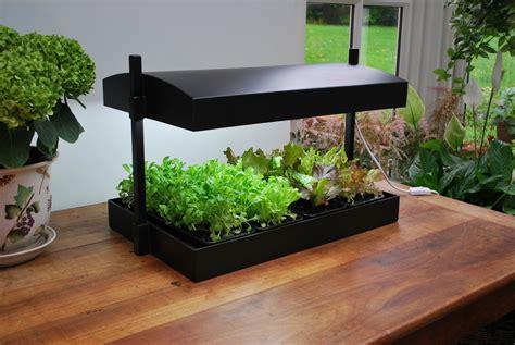 Indoor Kitchen Garden Indoor Herbs Indoor And Herbs Garden